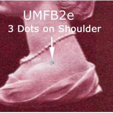 SG-UMFB2e-FA3-STN-VB3f-Set2-Imp2-E1-1030